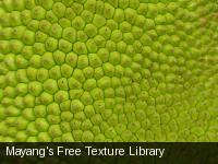 Mayang's Free Texture Library